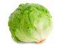 Lettuce Iceberg delivered in Melbourne