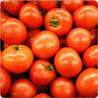 Tomato (kg) delivered in Melbourne