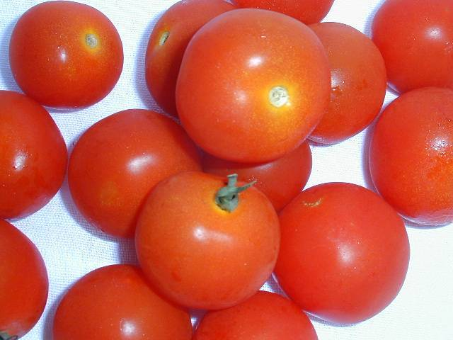 Tomato Cherry (punnet) on sale. Delivered in Melbourne
